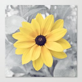 Yellow Grey Flower Photography, Yellow Gray Nature Floral Photography Canvas Print