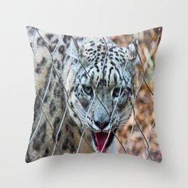 Chipper Throw Pillow