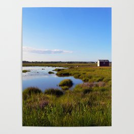Marshy Meadows Poster