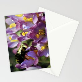 Bumble Bee On A Crocus Stationery Cards