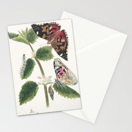 Antique watercolor  of nettle butterfly in various life stages published in 1824 by MP Stationery Cards