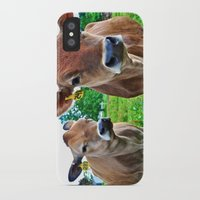 cows iPhone & iPod Cases featuring Cows by Chris Klemens