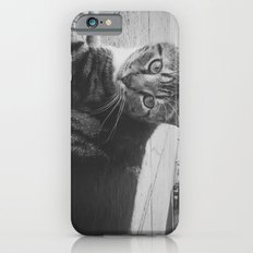 Street Kitty iPhone 6s Slim Case