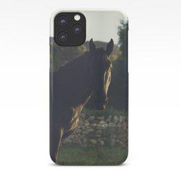 Wild stallion photo, black horse and italian sunset, original print for animal lovers, landscape iPhone Case