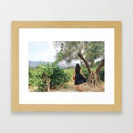 Napa Valley Fairytale Framed Art Print