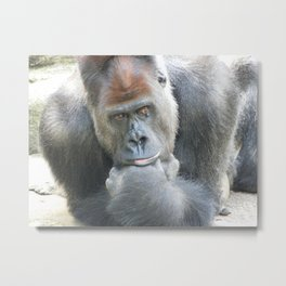 Lowland Gorilla in Deep Thought Metal Print