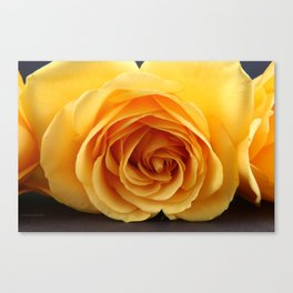 By Any Other Name... Canvas Print