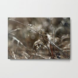 Pure Morning IV Metal Print