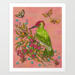 Floral Woodpecker Art Print