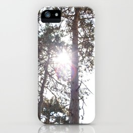 Through the branches iPhone Case
