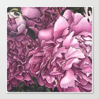 peonies Canvas Prints featuring Peonies by Jada Fitch