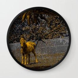 Cute miniature horse foal. Wall Clock