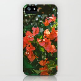 Tropical Hawaii IV iPhone Case