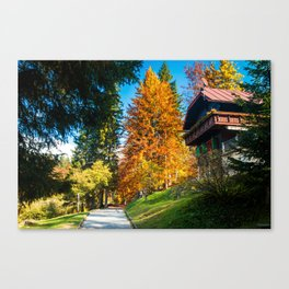 trekking path in an autumn day in the alps Canvas Print