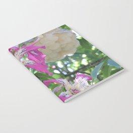 Silk Floss Tree Blossom & Fluff Notebook