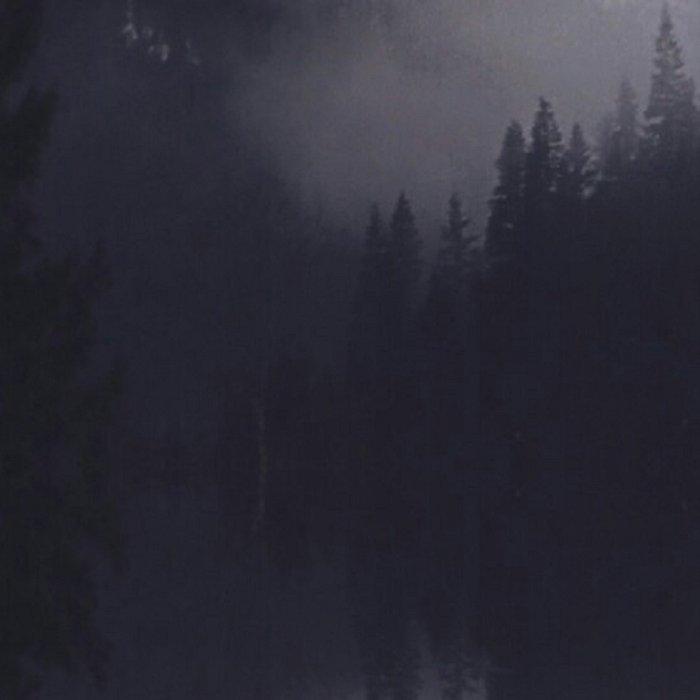 British Columbia Dreaming Leggings