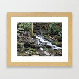 Trickles in the Woods Framed Art Print