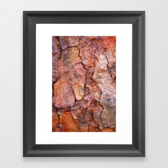 Arboretum Bark Framed Art Print