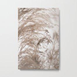 Pampas Grass Natural Motion Blur Metal Print