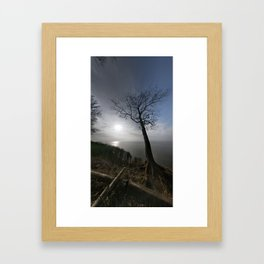 The Tree by the Sea Framed Art Print