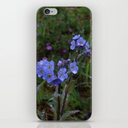 Forget-Me-Nots iPhone Skin