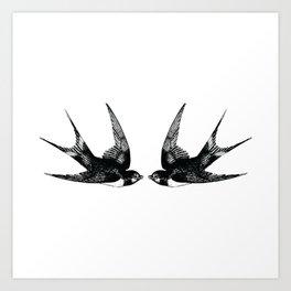 Double Swallow Illustration Art Print