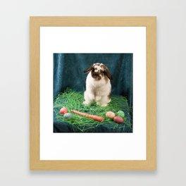 The Rabbit Queen Framed Art Print
