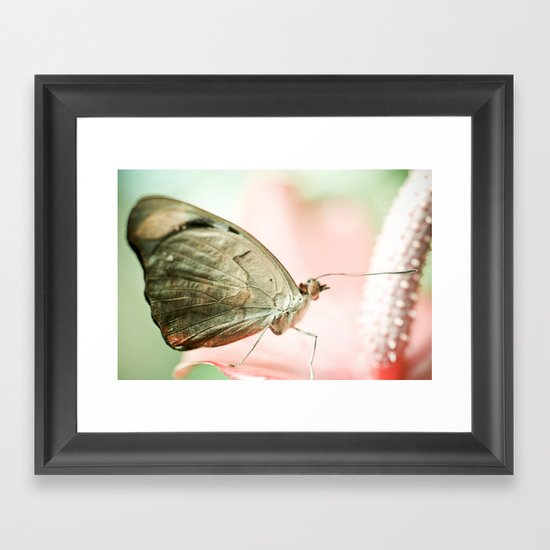 A Quiet Lullabye Framed Art Print