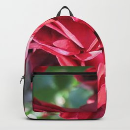 Red rose Backpack