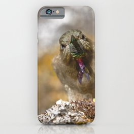 olivaceous Thornbill (Chalcostigma olivaceum) iPhone Case