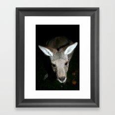 Joey Framed Art Print