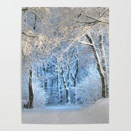 Another winter wonderland Poster