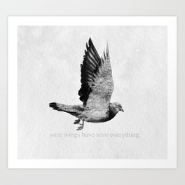 Voyager: Your Wings Have Seen Everything Art Print