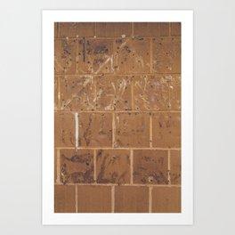 Abstract Urban Brick Photograph Art Print