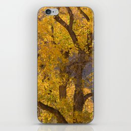 Glowing Cottonwood iPhone Skin