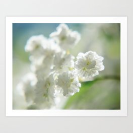 Itty-bitty white Art Print