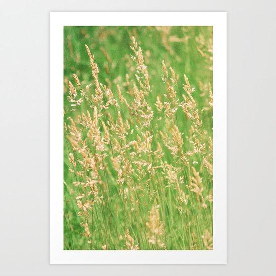 Green Grasses Art Print
