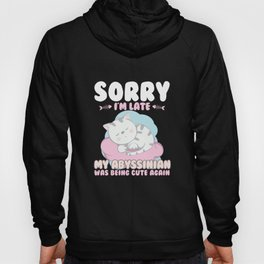 Cat Lover Shirt Sorry Im Late My Abyssinian Being Cute Again Hoody