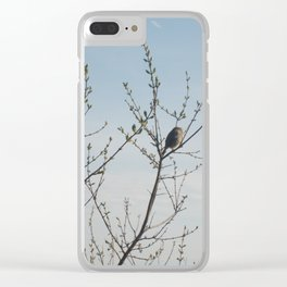 Lone Sparrow Clear iPhone Case