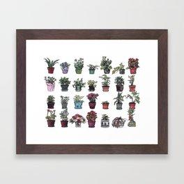 Beesly Botanicals Framed Art Print