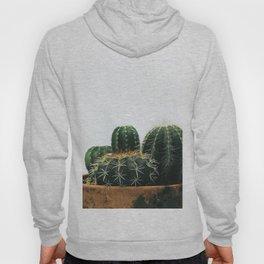 02_Cactus Hoody