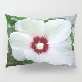 White Hibiscus Flower Ruffle Pillow Sham