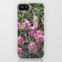 Spring in  the Arctic iPhone Case