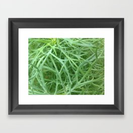 Wire Plant Framed Art Print