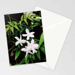 Grow 1 Stationery Cards