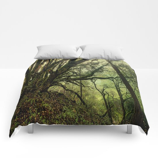 The octopus tree Comforters