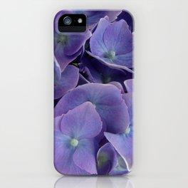 Hydrangeas iPhone Case