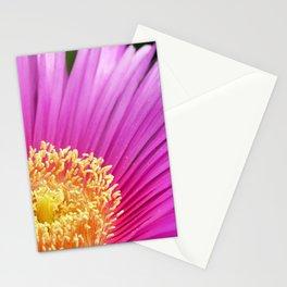 Iceplant - Carpobrotus edulis Stationery Cards