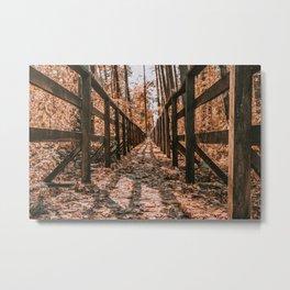 Nature path Metal Print