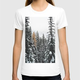 353. Autumn Pine in Snow Forest, Banff, Canada T-shirt